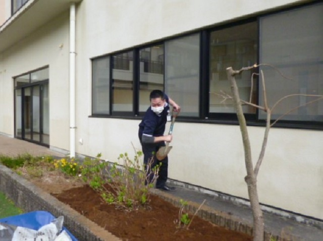 伊東・ウェルケア伊豆高原 紫陽花の植え付け